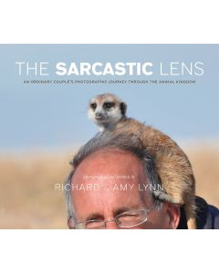 The Sarcastic Lens