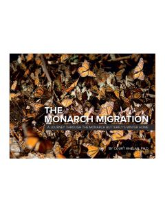 The Monarch Migration: A Journey through the Monarch Butterfly's Winter Home